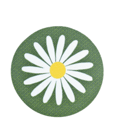Coaster Daisy Green