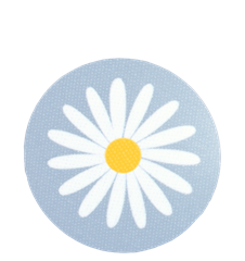 Coaster Daisy Light-blue