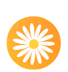 Coaster Daisy Orange