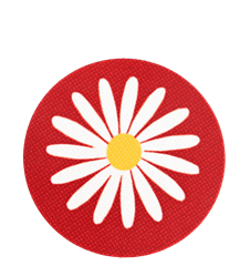 Coaster Daisy Red
